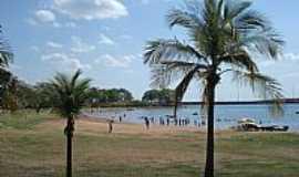 Ilha Solteira - Ilha Solteira-SP-Coqueiros na praia-Foto:Jesus Tonete