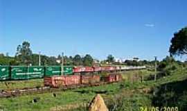 Iper� - Trem Ecol�gico-Foto:miralia