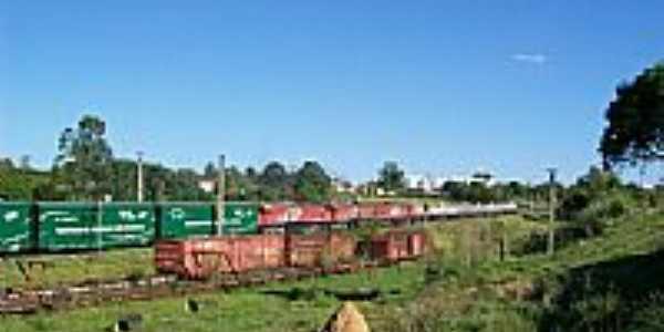 Trem Ecológico-Foto:miralia