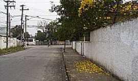 Itaquaquecetuba - Ipê amarelo na Rua Rio São Francisco em Itaquaquecetetuba-Foto:Kacinskas