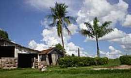 Jamaica - Imagem rural-Foto:Profjcesar.ms