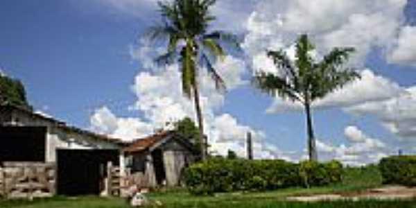 Imagem rural-Foto:Profjcesar.ms