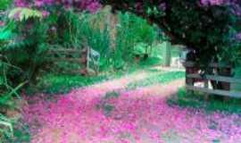 Jambeiro - Primavera -  Por Maria Inês