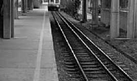 Jardim Silveira - Plataforma Estação Silveira-Foto:Filipe_Photos