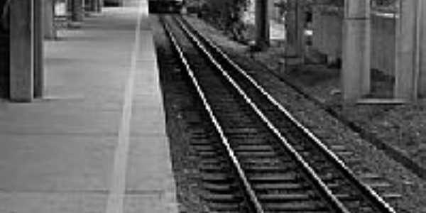 Plataforma Estação Silveira-Foto:Filipe_Photos