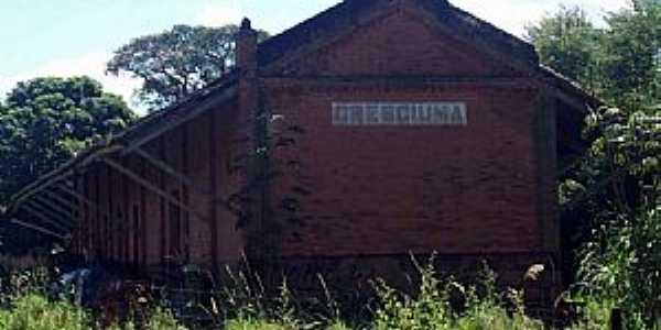 Jardinópolis-SP-Antiga Estação Ferroviária de Cresciúma-Distrito de Jardinópolis-Foto:Leonardo Figueiredo