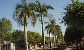 Lavínia - Lavínia-SP-Avenida Principal-Foto:www.lavinia.sp.gov.br