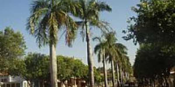 Lavínia-SP-Avenida Principal-Foto:www.lavinia.sp.gov.br