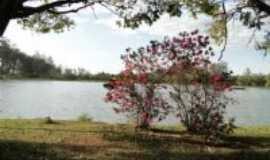 Limeira - Horto Florestal - Limeira SP, Por Edemar C. Hebling SJCampos SP