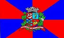 Lins - Bandeira da cidade