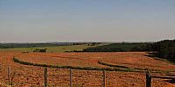 Área rural de Lins-Foto:gustavo_asciutti