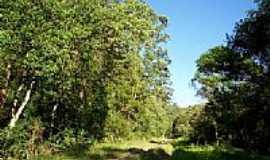 Mairinque - Ramal Mairinque -Santos: Km inicial