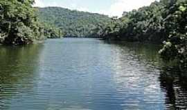 Mairiporã - Parque Estadual da Serra da Cantareira Foto João Savioli
