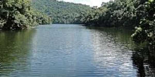 Parque Estadual da Serra da Cantareira Foto João Savioli