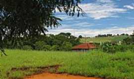 Maracai - Vista da área rural de Maracaí-SP-Foto:gustavo_asciutti