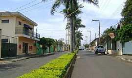 Mineiros do Tietê - Mineiros do Tietê-SP-Avenida Frederico Ozanan-Foto:Gerson Luciano