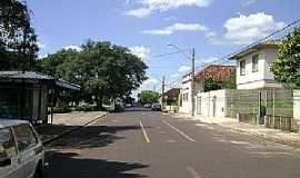 Mineiros do Tietê - Mineiros do Tietê-SP-Rua da cidade-Foto:Gerson Luciano