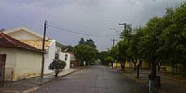 Rua de Miraluz-Foto:furmigao