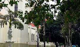 Nova Granada - Nova Granada-SP-Jardim da Paróquia de São Benedito-Foto:Ricardo Mercadante
