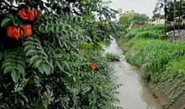 Orlândia - Córrego dos Palmitos-Foto:MARCO AURELIO ESPARZ…