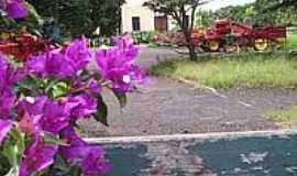 Orlândia - Museu Agromen de Tratorese implementos Agrícolas.Maior museu do gênero no mundo-Foto:MARCO AURELIO ESPARZ…