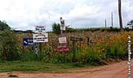 Padre Nóbrega - Propriedade rural-Foto:Ivan evangelista Jr