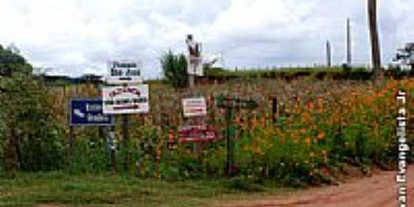 Propriedade rural-Foto:Ivan evangelista Jr