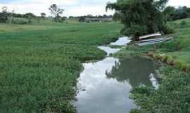 Panorama - Panorama-SP-Rio Marreca afluente do Rio Paraná-Foto:Rubens da Silva Ramos