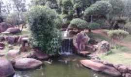 Paraguaçu Paulista - Jardim Cerejeira, Por Claudinei