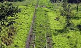 Parapuã - Linha férrea