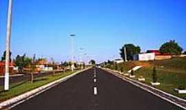 Paulistânia - Avenida-Foto:Luciano Rizzieri
