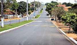 Paulópolis - Paulópolis-SP-Avenida de entrada da cidade-Foto:Fabio Vasconcelos