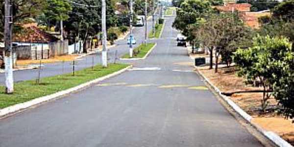 Paulópolis-SP-Avenida de entrada da cidade-Foto:Fabio Vasconcelos