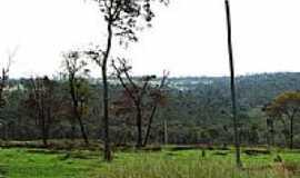 Pederneiras - Cerrado na região de Pederneiras-Foto:gustavo_asciutti