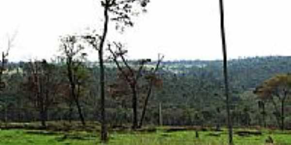 Cerrado na região de Pederneiras-Foto:gustavo_asciutti