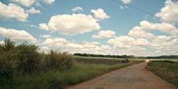 Estrada em Pedra Branca-Foto:M.M.C