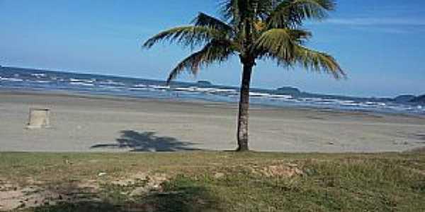 Peruíbe-SP-Praia de Peruíbe-Foto:Conceição Savioli