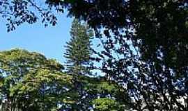 Pilar do Sul - Foto de Rojer
