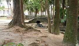 Pindamonhangaba - Pindamonhangaba-SP-Bosque da Princesa-Foto:Marcio Aparecido de Souza