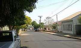Pindorama - Pindorama-SP-Rua da cidade-Foto:Mauro Luiz Benedito da Costa