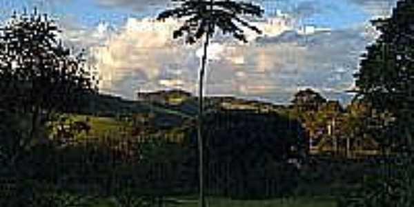 Vista da região de Pinhalzinho-Foto:rogermamo