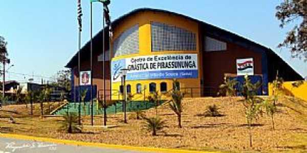 Pirassununga-SP-Centro de Gin�stica Sinh�-Foto:Reginaldo Resende