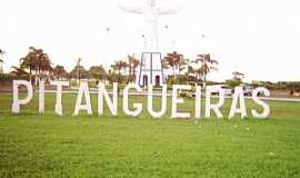 Pitangueiras - Pitangueiras-SP-Trevo de acesso-Foto:locce