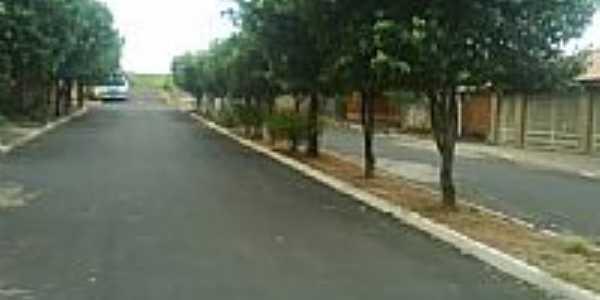 Avenida-Foto:Sergio Cassio