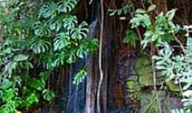 Potunduva - Pequena Cachoeira no Parque Frei Galvão-Foto:Rui M.