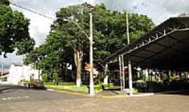 Presidente Alves - Largo Santa Cec�lia em Presidente Alves-SP-Foto:Wilson Alcaras