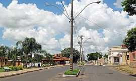 Quintana - Quintana-SP-Avenida na entrada da cidade-Foto:Eduardo Dantas