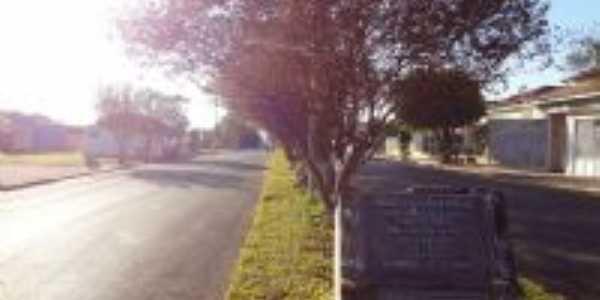 Avenida, Por Edna dos Santos