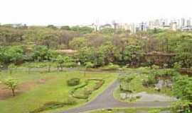 Ribeirão Preto - Ribeirão Preto-SP-Parque Curupira-Foto:Antonio de Andrade