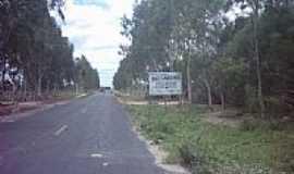 Quixabeira - Estrada-Foto:larsan44